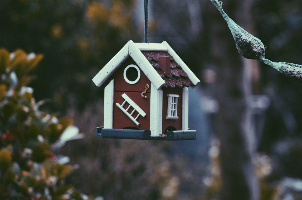 Maison pour oiseaux en bois